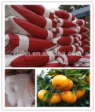 NK 46-13.5 KNO Fertilizer for Citrus Tree