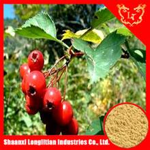 High Quality Natural hawthorn powder flavones