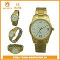 2014 Fransız saat markaları Cenevre platinume açıklaması kol saati
