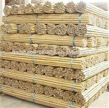 Dry Straight Farming Bamboo Poles