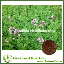 Purple flower oregano seed for growing