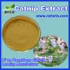 High Quality Wholesale Catnip