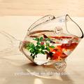 Caliente la venta de pescado de vidrio en forma de tanque de los pescados, plato de pescado, el acuario arcylic