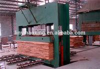 China professional veneer cold press machine for plywood machine line