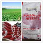 Potassium Fertilizer Classification White Powder State Nitrate of Potash