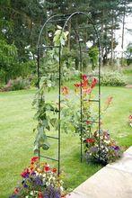 metal garden arch SG4031