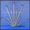 galvanized srew shank roofing nails for asphalt&shingles(factory) TSMS-072S