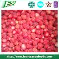 venta al por mayor de alta 2014 congelados de fresa secos