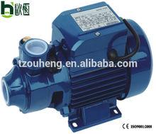 QB 60 water pump home depot