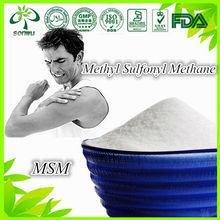 msm polvere metil sulfonil metano