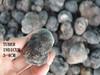 fresh desert truffle
