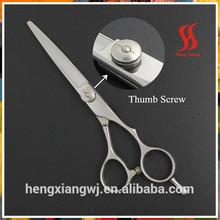 2012 hair cutting scissors
