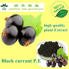 black currant benefits is Protect hair and antioxidants