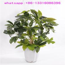 LXY072521 artificial pachira money tree plant fake green plant ornamental artificial foliage plants