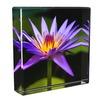 2014 luxury style glass solid acrylic ice blocks display photo best selling