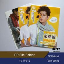 Wholesale High Quality L Shape File Folder