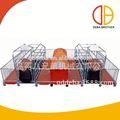 criação de suínos de equipamentos