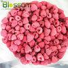 New crop frozen fruit IQF Frozen raspberry