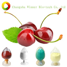 High quality acerola cherry p.e/cherry fruit extract/cherry extract powder