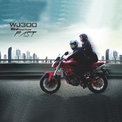 300cc sports racing motorcycle (WJ300)