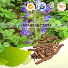 Original Salvia Miltrorrhiza, Raw Crude Natural Organic High quality The Root of Red-rooted Salvai, Radix Salvia Miltiorrhiza