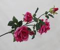 De color azul oscuro gran gala rosas, agua activado led iluminado rosas flotante para la decoración