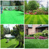 Competitive price top selling home backyard landscaping grass