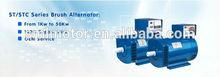 Fujian China ST & STC AVR alternator for sale