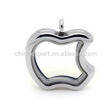 Apple Shape Stainless Steel Memory Floating Charms Locket