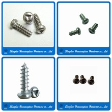China manufacturer screw triangle head