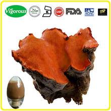 Free sample pure natural Antrodia Camphorata p.e./Antrodia Camphorata extract powder/Antrodia Camphorata extract