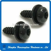 Black torx socket pan head drywall screw washers