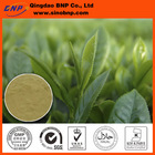 OEM Multi-specification Green Tea Extract Capsules