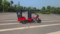 Adult Motorized Tricycle For Passengers