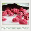 TTN bulk cheap wholesale organic import freeze dried fruit price
