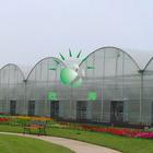 50 micron UV blocking hollow plastic sheet greenhouse hothouse sheet