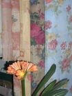 Voile & Organza Fabric for Window Curtain