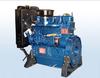 Weifang Ricardo 495/4100 K series diesel engine