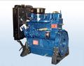Weifang Ricardo 495/4100 diesel motor fuera de borda