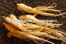 Organic Ginseng Ganoderma lucidum extract