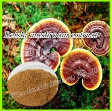 High quality reishi mushroom extract powder/reishi mushroom extract polysaccharides