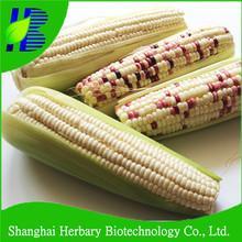 2015 caliente venta buena calidad de alto rendimiento híbrido colorido semillas de maíz