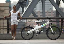 electric bicycle chopper / Seagull Direct Factory EN15194 EN14764 250w 350w 500w mountain electric bicycle
