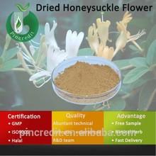 Honeysuckle Extract/Chlorogenic Acid/Dried Honeysuckle Flower