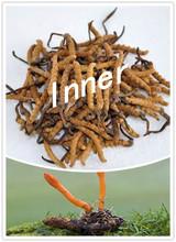 EU standard, Cordyceps versicolor, polysaccharide 40%