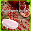 Natural pomegranate extract/ pomegranate powder/pomegranate juice powder