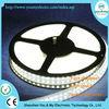 Double Row cool white LED strip SMD 3528 Waterproof 240led/m Flexible LED Strip 1200led Light