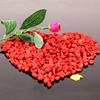 Chinese natural goji berries import