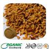 Brown Powder Extracted from Cassia Tora Semen Seeds