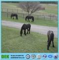 de metal barato de los animales de granja de ganado panel de la cerca